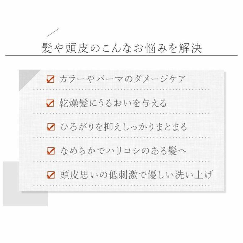 シャンプー 美容室 専売品 詰替用 apish ボタニカル シャンプー 心髪 ノンシリコン リフィル 700mL